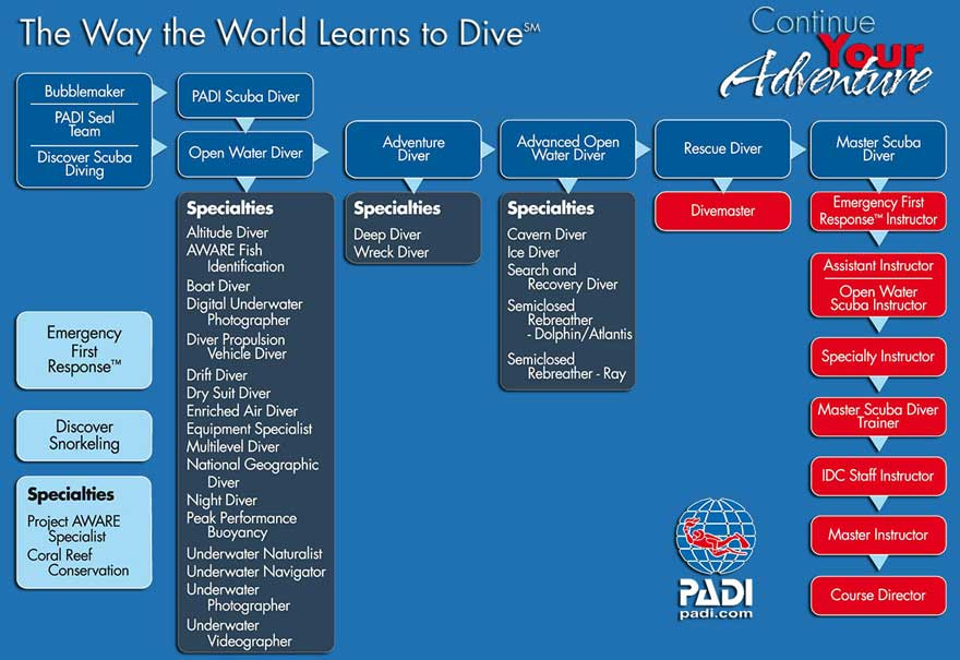PADI course system
