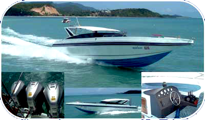 Searobin Welcome you to custom diving speed boat