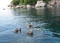 Koh Tao dive sites