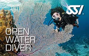 SSI Open Water course on Samui