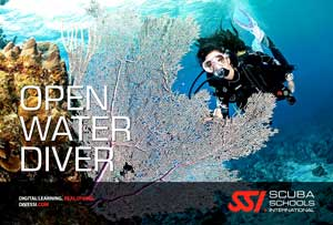 SSI open water diver course samui